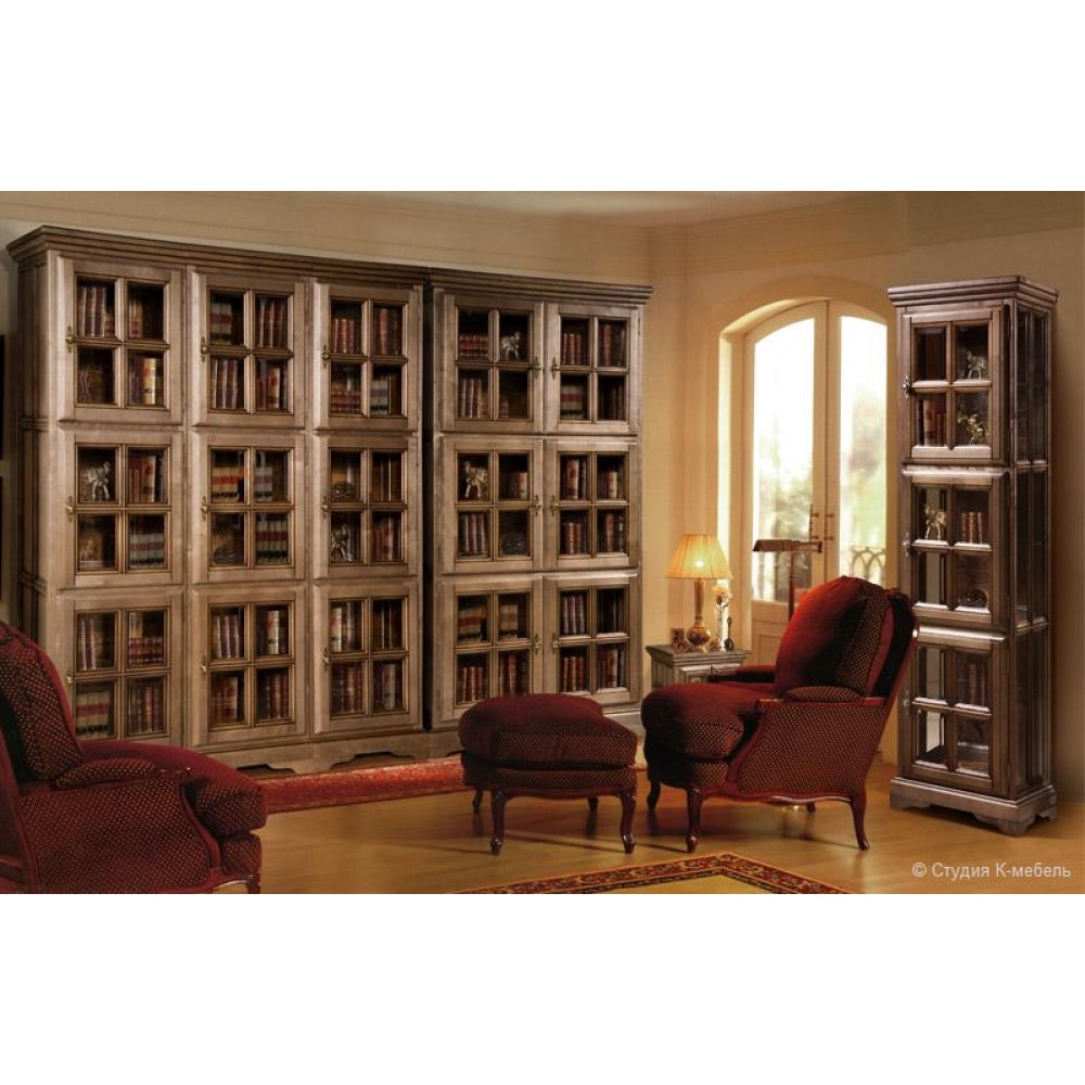 Библиотека «Сальвина» Студия К мебель  1717